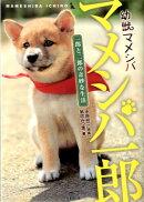 幼獣マメシバ マメシバ一郎(一郎と二郎の奇妙な生活)