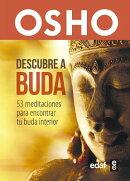 Descubre a Buda
