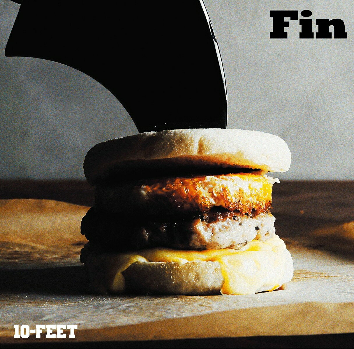 Fin (完全生産限定盤 CD+DVD+グッズ) [ 10-FEET ]