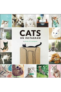 CATSONINSTAGRAM[@cats_of_instagram]