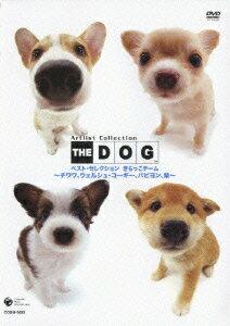 Artist Colletion THE DOG ベスト・セレクション きらっこチーム 〜チワワ、ウェルシュ・コーギー、パピヨン、柴〜 [ (趣味/教養) ]