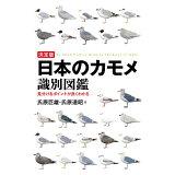 決定版日本のカモメ識別図鑑