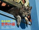 2021岩合光昭 世界の猫カレンダー [ 岩合光昭 ]