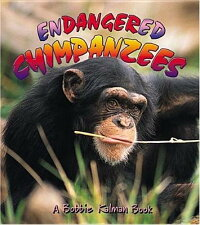 Endangered_Chimpanzees