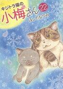 キジトラ猫の小梅さん 22
