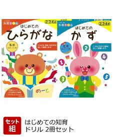【バーゲン本】はじめての知育ドリル 2冊セット [ わだ ことみ ]