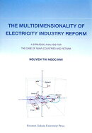The multidimensionality of electricity i
