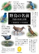 野鳥の名前