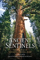 Ancient Sentinels: The Sequoias of Yosemite National Park