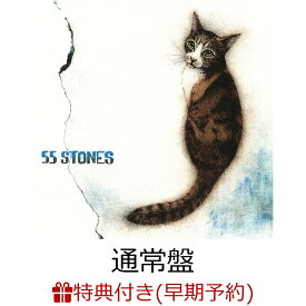 【早期予約特典】55 STONES(『55 STONES』オリジナルA4サイズノートパッド) [ 斉藤和義 ]