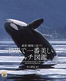 世界で一番美しい シャチ図鑑