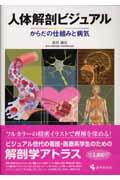 人体解剖ビジュアル