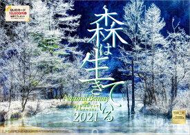 【楽天ブックス限定特典付】森は生きている 2021年 カレンダー 壁掛け 風景 (写真工房カレンダー)