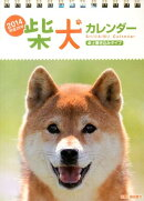 柴犬カレンダー卓上書き込みタイプ(B6タテ)(2014年)