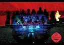 欅坂46 LIVE at 東京ドーム 〜ARENA TOUR 2019 FINAL〜(通常盤) [ 欅坂46 ]