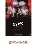 【先着特典】Lead LIVE TOUR「Lead Upturn 2019 ~Sync~」(Leadクリスマスポストカードセット付き)