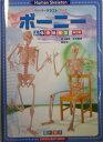 ボーニー改訂版 人体骨格模型 (ペーパークラフト・ブック) [ 井上貴央 ]