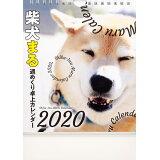 柴犬まる週めくり卓上カレンダー(2020) ([カレンダー])