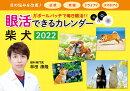 2022 眼活できるカレンダー 柴犬