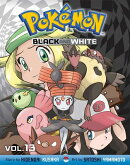 Pokemon Black and White, Vol. 13