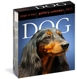 DOG GALLERY CALENDAR 2021(PAGE-A-DAY) [ WORKMAN ]