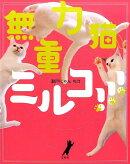 無重力猫、ミルコ!!!