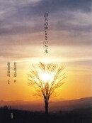 詩人の声をきいた木