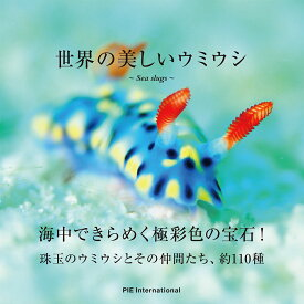 世界の美しいウミウシ [ 中野 理枝 ]