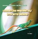 Lagartijas Pequenitas/Itty Bitty Geckos