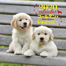 2020年 大判カレンダー ゴールデン・レトリーバー [ 井川 俊彦 ]