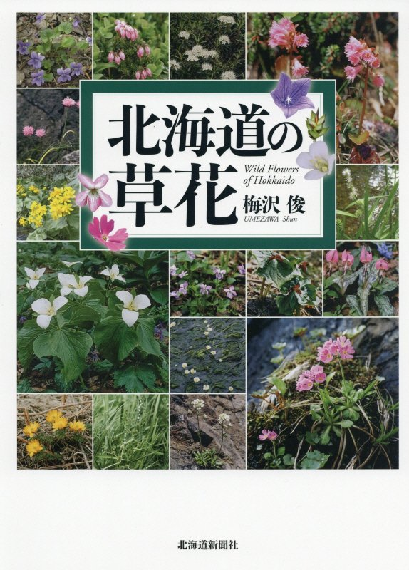 北海道の草花 [ 梅沢俊 ]