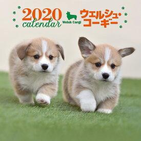 2020年 大判カレンダー ウェルシュ・コーギー [ 井川 俊彦 ]