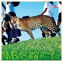 Team N 2nd Stage 青春ガールズ