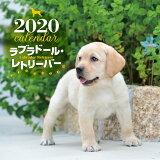 大判カレンダーラブラドール・レトリーバー(2020年) ([カレンダー])