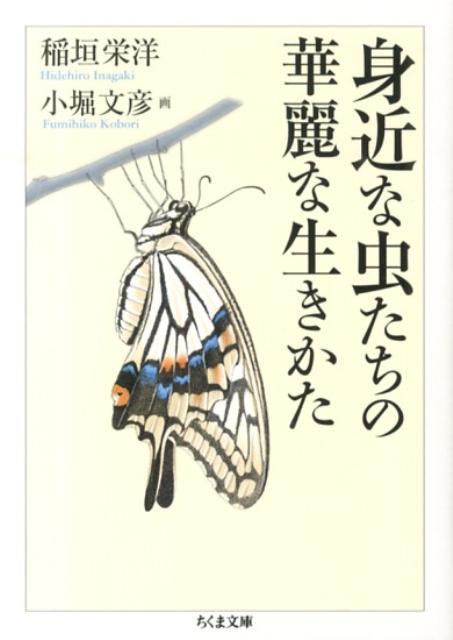身近な虫たちの華麗な生きかた (ちくま文庫) [ 稲垣栄洋 ]