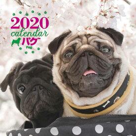 2020年 大判カレンダー パグ [ 平林 美紀 ]