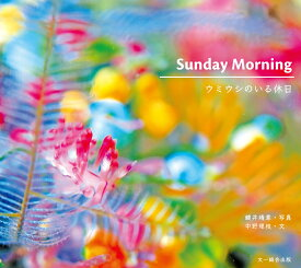 SUNDAY MORNING ウミウシのいる休日 [ 鍵井 靖章 ]