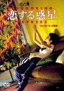 恋する惑星 [ トニー・レオン[梁朝偉] ]