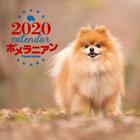 2020年 大判カレンダー ポメラニアン [ 中村 陽子 ]