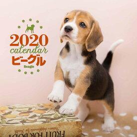 2020年 大判カレンダー ビーグル [ 平林 美紀 ]