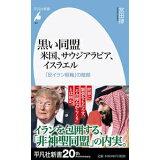 黒い同盟米国、サウジアラビア、イスラエル (平凡社新書)