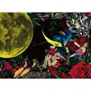 夜、カルメンの詩集 (初回限定盤 CD+DVD)
