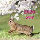 大判カレンダーウサギ(2020年) ([カレンダー])