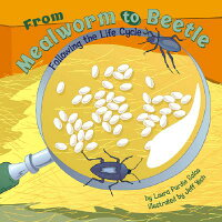 From_Mealworm_to_Beetle:_Follo
