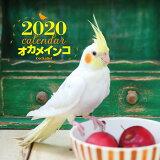 大判カレンダーオカメインコ(2020年) ([カレンダー])