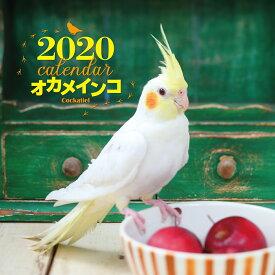 2020年 大判カレンダー オカメインコ [ 蜂巣 文香 ]