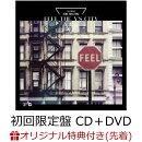 【楽天ブックス限定先着特典+楽天ブックス限定 オリジナル配送BOX】FEEL THE Y'S CITY (初回限定盤 CD+DVD) (オ…