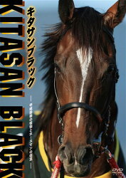 キタサンブラック 〜平成最後の怪物とホースマンの信念〜