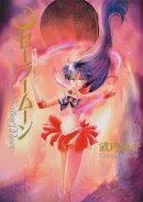 美少女戦士セーラームーン完全版(3)