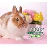 ミニ判カレンダーウサギ(2020年) ([カレンダー])